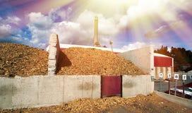 有木燃料存贮的生物能源厂反对蓝天的 免版税库存照片