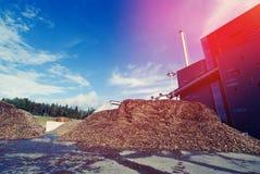 有木燃料生物量存贮的生物能源厂  库存照片