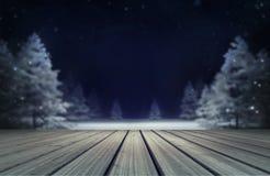 有木甲板的斯诺伊森林晚上 库存例证