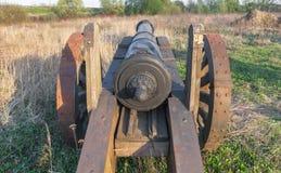 有木的老大炮把领域引入 免版税图库摄影