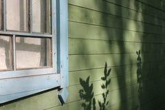 有木窗口和植物美丽的树荫的老房子墙壁  库存照片