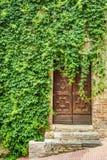 有木门的古老常春藤穿的房子 库存图片