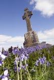 有会开蓝色钟形花的草的老古老凯尔特爱尔兰坟园 库存照片