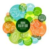 有机健康水果和蔬菜概念性例证 库存图片
