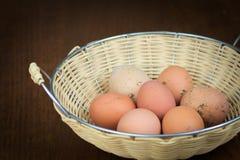 有机农厂新鲜的鸡蛋 免版税库存图片
