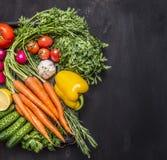 有机农厂菜新鲜的红萝卜西红柿、大蒜、黄瓜、柠檬、胡椒、萝卜、木匙子盐和胡椒颜色 免版税库存照片