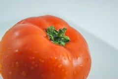 有机新鲜的红色蕃茄 免版税库存照片