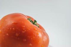有机新鲜的红色蕃茄 库存照片