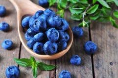 有机新鲜的蓝莓用在木背景的薄荷 库存照片