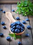 有机新鲜的蓝莓用在木背景的薄荷 免版税库存照片