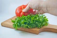 有机新鲜的蕃茄和荷兰芹 库存照片