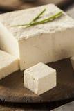 有机未加工的大豆豆腐 库存图片