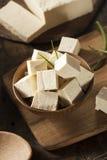 有机未加工的大豆豆腐 图库摄影