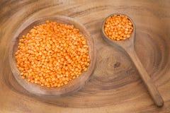 有机未加工的红色小扁豆-透镜culinaris 免版税库存图片