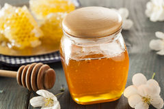 有机未加工的金黄蜂蜜梳子 免版税图库摄影