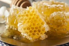 有机未加工的金黄蜂蜜梳子 库存照片