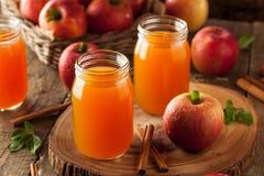 有机橙色苹果汁 库存图片