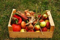 有机水果和蔬菜 免版税图库摄影
