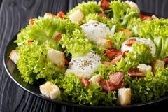 有机法国和洋葱薄片一同油炸沙拉用莴苣,烟肉,油煎方型小面包片和 免版税库存图片