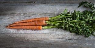 有机的红萝卜 免版税库存图片