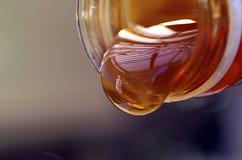 有机的蜂蜜 库存照片