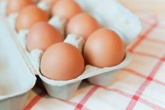 有机的鸡蛋 库存图片