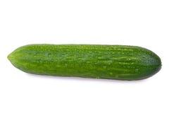 有机的黄瓜 免版税库存图片