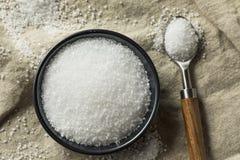 有机粗糙的海盐 免版税库存图片