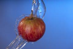 有机红色苹果水飞溅蓝色背景 免版税图库摄影