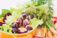 有机红萝卜和甜菜根沙拉 库存图片