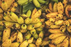 有机绿色和黄色香蕉在地方农夫市场上 库存照片