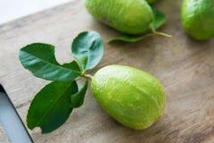 有机绿色柠檬 图库摄影