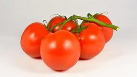 有机自然蕃茄 免版税库存照片