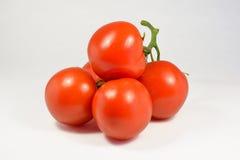 有机自然蕃茄 免版税库存图片