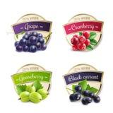 有机莓果标签收藏 向量例证