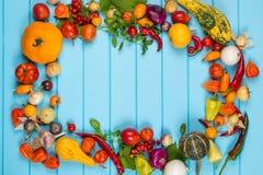 有机菜框架在蓝色木背景的 新鲜蔬菜拼贴画 文本的空间 免版税图库摄影