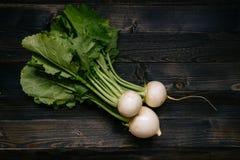 有机蔬菜 在黑暗的木背景的新鲜的被收获的白萝卜,顶视图 免版税库存图片