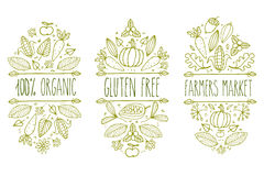 有机食品,面筋释放,农夫市场菜单商标 手拉的传染媒介剪影印刷元素 自然产品标签 叶子,玉米 免版税图库摄影