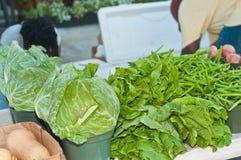有机,新鲜,地方圆白菜、无头甘蓝和菜豆 免版税图库摄影