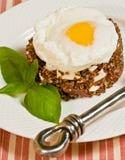 有机,新鲜,奎奴亚藜、蕃茄、蓬蒿mozzarell和鸡蛋 库存照片