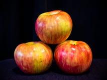 有机,非GMO苹果 免版税库存图片