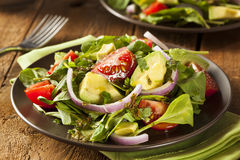 有机绿色Avacado和蕃茄沙拉 图库摄影