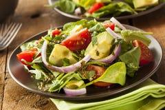 有机绿色Avacado和蕃茄沙拉 免版税库存照片