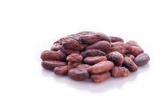 有机cacoa豆 免版税图库摄影