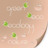 有机eco的徽标 免版税库存照片