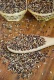 有机Riceberry米 库存图片