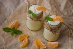 有机yougurt用新鲜的蜜桔和薄菏在玻璃瓶子 图库摄影