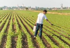 年轻有杀虫剂的农夫喷洒的大豆种植园 免版税库存照片