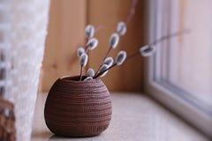 有杨柳小树枝的陶瓷花瓶  免版税库存图片