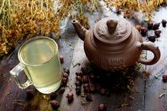 有杯子的茶壶草本治疗绿茶 免版税图库摄影